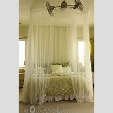 Ceiling Mounted Bed Canopy Consisting Of Eyebolts, Turn