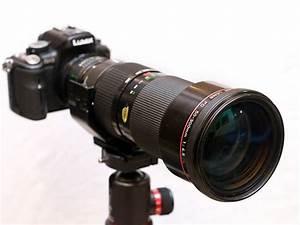The Canon Fdn 50  4 5 L Lens  Specs  Mtf Charts  User Reviews