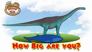 Dinosaur Train : How Big are You? #4 - Argentinosaurus VS ...