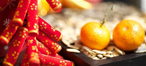 unique chinese  year facts factretrievercom