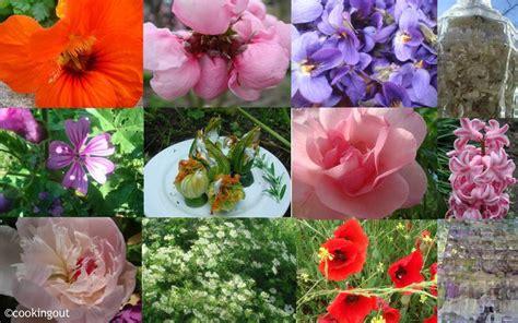 le bon cuisine voici une liste de 42 fleurs comestibles à déguster