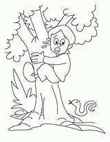 Coloring Climbing Tree Boy Pages Rock Climb Colouring Clipart Cartoon Clip Printable Don Climber Popular Library Results sketch template