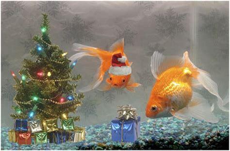 christmas tree fish tank decoration  tsus