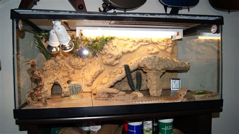 ball python heat l off at night ideal enclosures for popular herps lchart26