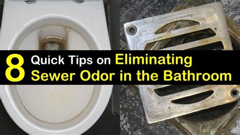 rid  sewer smell   bathroom  quick
