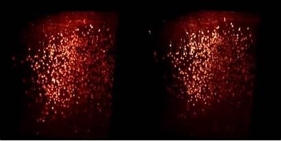Viral Neuron Activity Term Tool Traces Virus