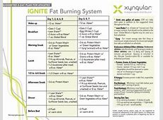 The Ignite Fat Burning System health weight loss