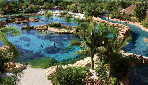 Discovery Cove Orlando Tickets by Discovery Cove Seaworld Waterpark Discount Tickets