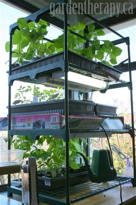 seed starter grow lights grow light shelving for seed starting indoors grow