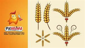 Autumn Wheat Vector - Illustrator Tutorial