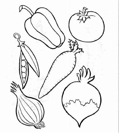 Vegetables Different Coloring Types Fruits