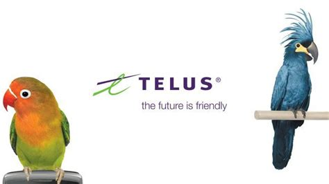 The New Telus Grand Gestures Campaign!
