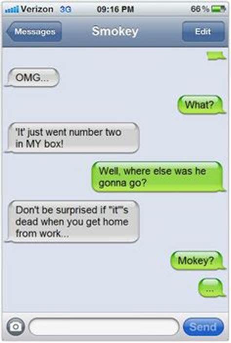 images  cat text messages  pinterest texts