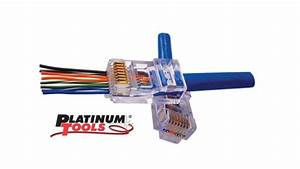 Platinum Tools U0026 39  Ez 6 Connectors