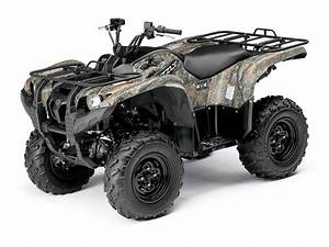 Wiring Diagram For 2009 Yamaha Grizzly