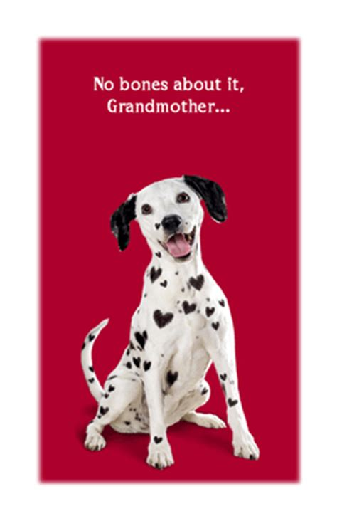 """Maybe you would like to learn more about one of these? """"Dog-gone Special"""" 