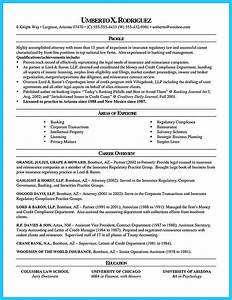 Professional Skills On Resume Arranging A Great Attorney Resume Sample