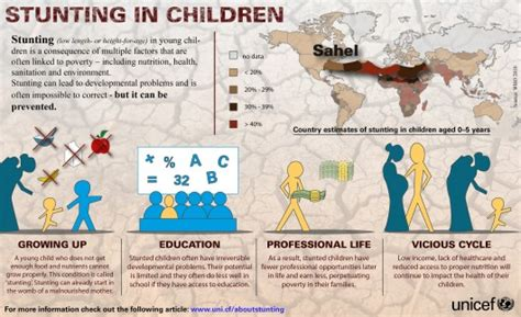 childhood stunting  long term effects  borgen project