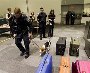 Harper Government Gives Sniffer Dogs The Boot