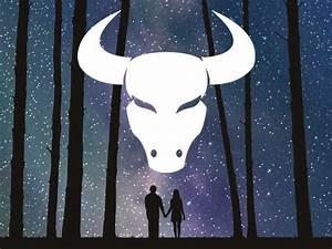 Welche Sternzeichen Passen Zum Stier : welche sternzeichen passen wirklich zusammen ~ Markanthonyermac.com Haus und Dekorationen