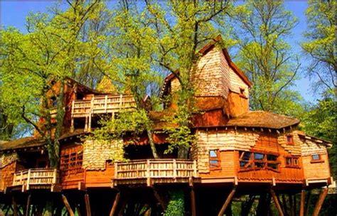 Super Nice Tree Houses