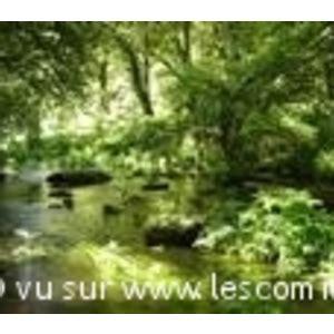 bureau vallee brest commune berne mairie et office de tourisme fr