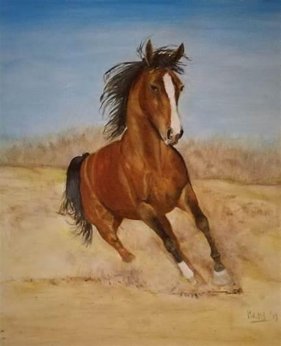 Horse Running Hans Dutch Artist Pantings Foundmyself