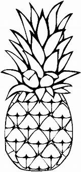 Pineapple Coloring Sweet Caribbean Clip sketch template