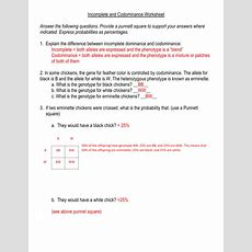 Incomplete And Codominance Worksheet Answers Homeschooldressagecom