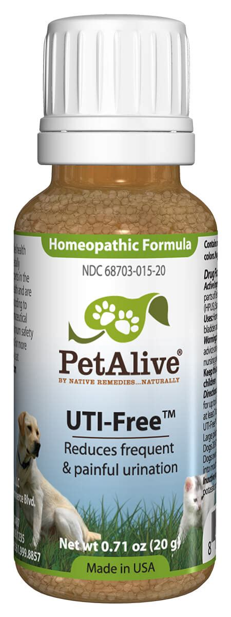 uti natural treatment  dogs  homeopathic