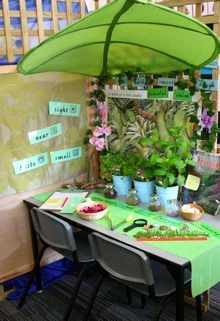 Preschool Science Table for Classroom