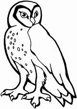 Owl Coloring Pages Printable Animals Print Owls Barn Animal Stencil Wildlife Hoot Snowy Templates Printables Stencils Sheknows Little Cartoon Dog sketch template
