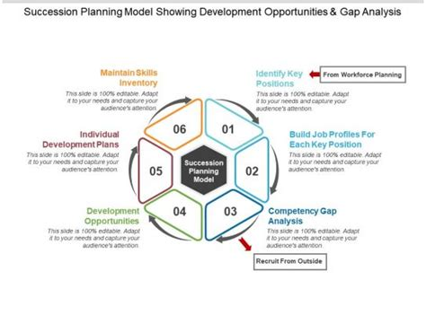 succession planning model showing development