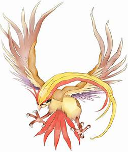 Pidgeot Wallpapers - Wallpaper Cave