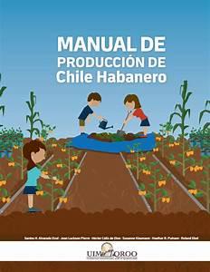 Manual De Produccion De Chile Habanero By Community