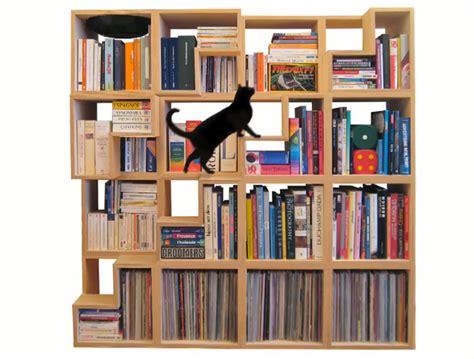 Corentin Dombrecht Cat Library