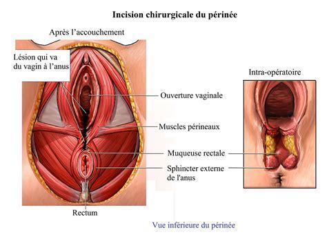 Douleur Dans Le Vagin Pendant Le Rapports Sexuels