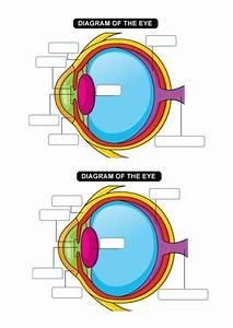 The Eye By Clarajean