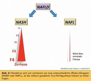 Fettleber, die, steatosis hepatis wird in die Varianten