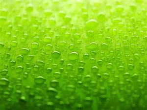 Green Wallpaper - Colors Wallpaper (34511126) - Fanpop
