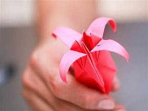 How to Fold an Origami Lily (with Pictures) - wikiHow