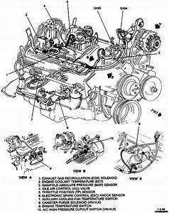 1995 Chevy Pickup Engine Diagram  Swengines
