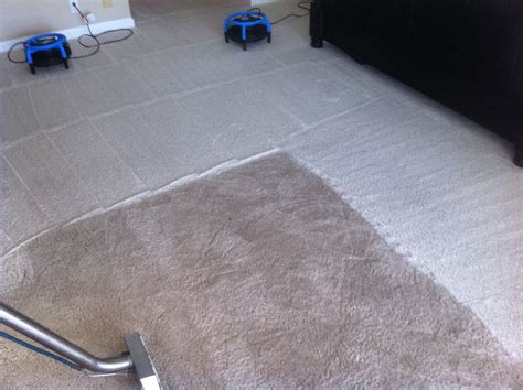 carpet cleaning kissimmee carpet menzilperde net