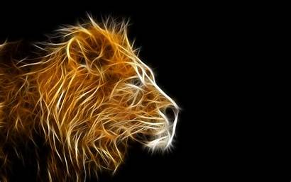 Lion Wallpapers Fire 3d Animal Wallpapertag Phone