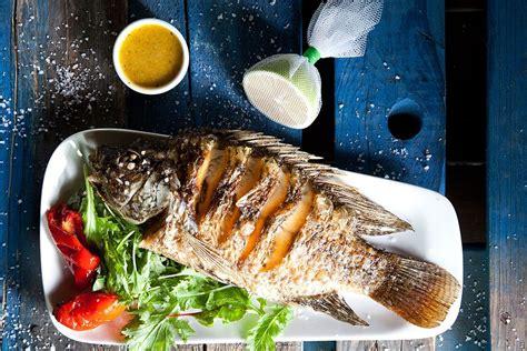 Baltijas reģiona zivis | viesistaba.lv