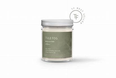 Pine Soy Candle Burning Scented Moss Fog