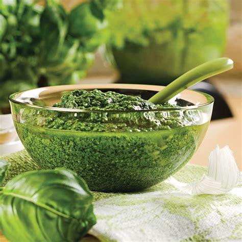basilic cuisine pesto de basilic recettes cuisine et nutrition