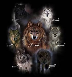 Quileute tribe The Wolves. The whole gang! Leah Clearwater ...