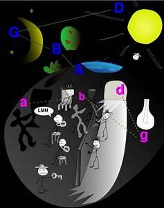 Diagram Plato Cave Analogy