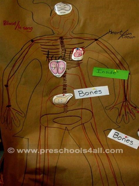 preschool science activities  human body
